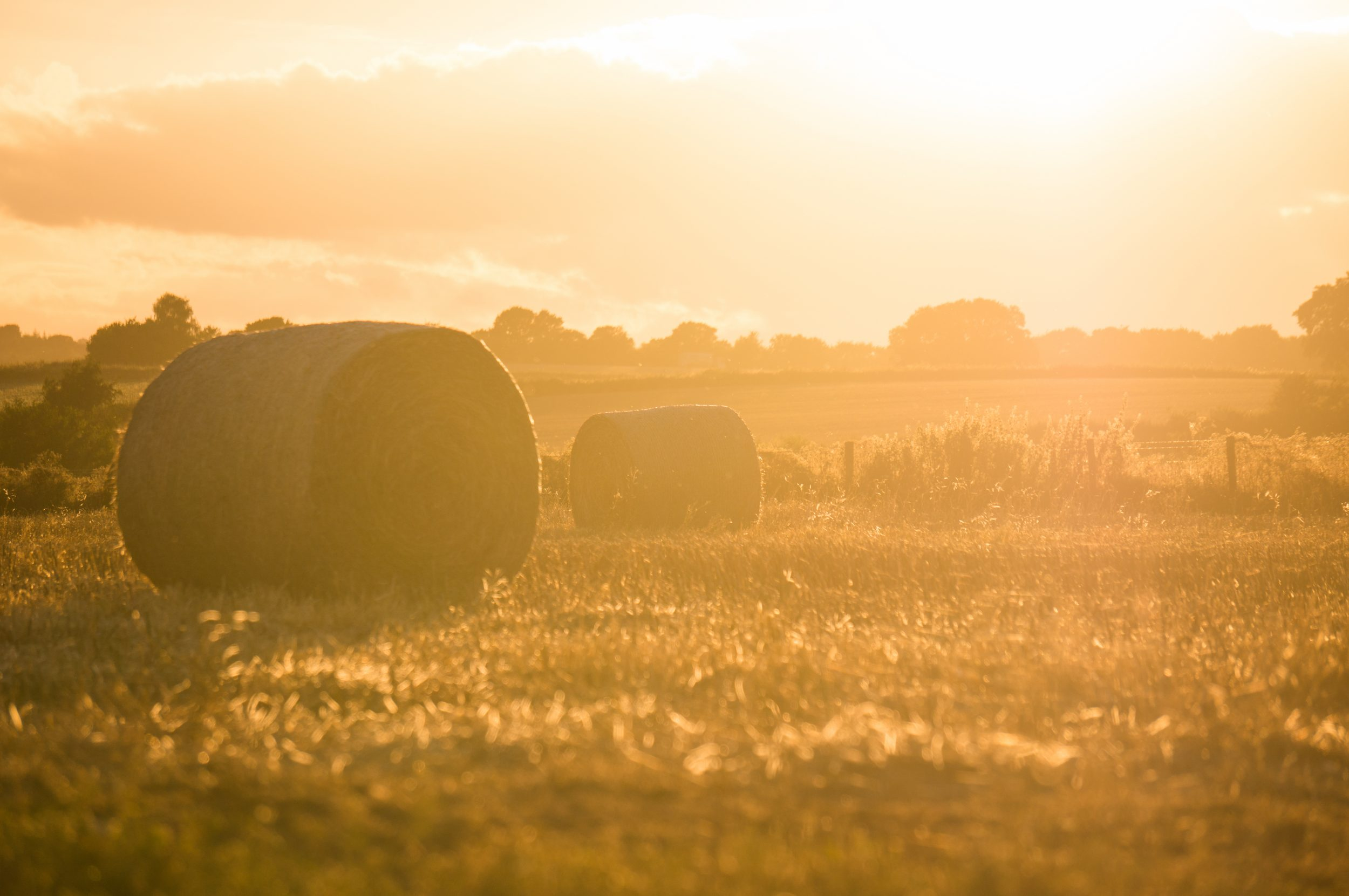 sistemas fotovoltaicos para explotaciones agrarias